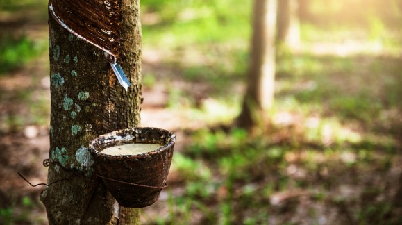 What is Natural Rubber?
