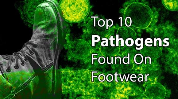 Top 10 Pathogens Found on Footwear